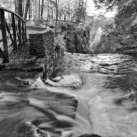 Cascade by Cal Brown - Black & White Landscapes ( letchworth, waterscape, black and white, cascade, state park, waterfall, new york, landscape,  )