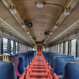 Luxury Coach by Diane Ljungquist - Transportation Trains