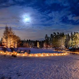 Beautiful Night by Joseph Law - City,  Street & Park  Night