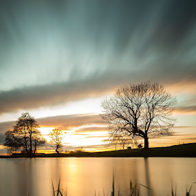 Sunset reflections by Andy Young - Landscapes Sunsets & Sunrises ( cheshire, england, uk, frodsham, sunset, trees, reflections, sutton weaver )
