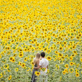 Engagement by Valter Antunes - Wedding Bride & Groom ( wedding, sunflower, bride, groom, engagement )