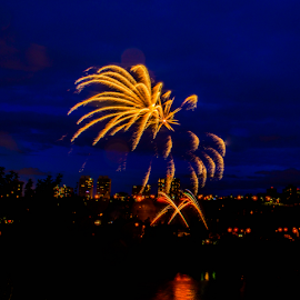 by Joseph Law - Public Holidays July 4th