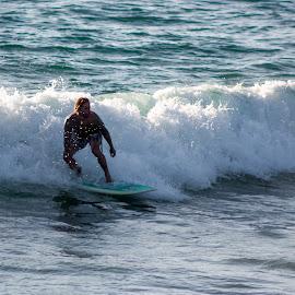 Single Surfer by Matt Dittsworth - Sports & Fitness Watersports ( water, san diego, surfer, fish, zen, wave, pier, surf, tao )