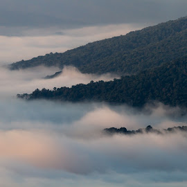 Morning Valley by Kevin Frick - Landscapes Mountains & Hills ( mountains, west virginia, fog )