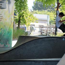 Looping Around The Skate Park by Roxanne Dean - Sports & Fitness Skateboarding ( skateboarding, balance, skate park, talented, skateboard )