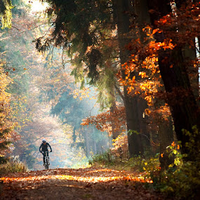 by Lukáš Lang - Sports & Fitness Cycling