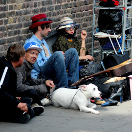 The white dog by Sorin Di Rokko - People Street & Candids