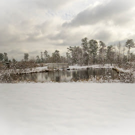 a peaceful winter scene by Desiree DeLeeuw - Landscapes Weather ( water, winter, ice, snow, landscapes )