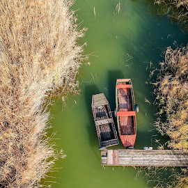 Boats by Péter Mocsonoky - Transportation Boats ( red, calm, hidden, nature, floating, reed, river, boats, aerial, lake, water, transportation )