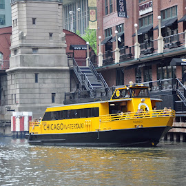 Chicago Water Taxi by Dawn Hoehn Hagler - Transportation Boats ( chicago river, taxi, chicago water taxi, chicago, boat, river,  )