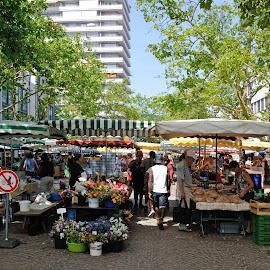 No Dogs by Victor Eliu - City,  Street & Park  Markets & Shops ( market, germany, lörrach, street photography, city )