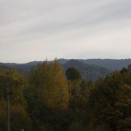 Есен by Georgi Kolev - Novices Only Landscapes ( природа., ден., есенен., време., тишина. )