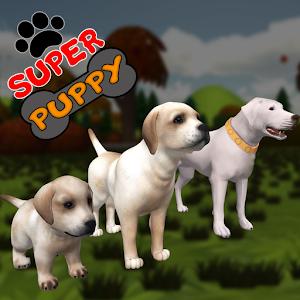 Super Puppy 3D Hacks and cheats