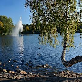 by Eugenija Seinauskiene - City,  Street & Park  City Parks