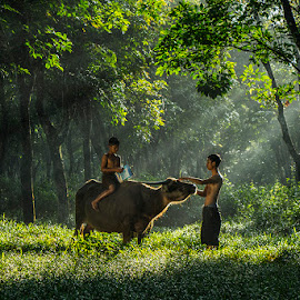 life is easy by Palus Liem - People Family ( farm, village, cow, kids, morning, natural )