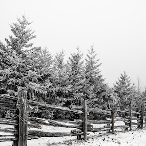 Snow and Fence by William Ducklow - Landscapes Weather