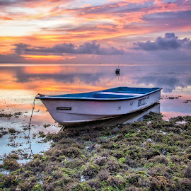 Sunrise  by Bobo Tandiono - Transportation Boats ( boat. seaweed. cloud sanur beach )