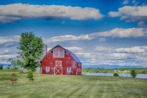 Red Barn on Lake Champlain by Debbie Quick - Buildings & Architecture Other Exteriors ( blue sky, crown point, debbie quick, adirondacks, exterior, outdoor photography, clouds, debs creative images, building, beautiful, barn, grass, farm, red barn, architecture, sky, lake champlain, tree, new york, water, national geographic, outdoor magazine, blue, outdoors, landscape,  )