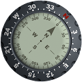 Compass - Real APK Descargar
