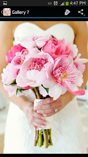 Wedding Flowers - screenshot