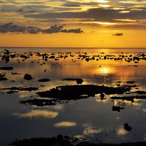 by Fresco Jr Linga - Landscapes Waterscapes