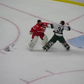 Goalie fight by John Pratt - Sports & Fitness Ice hockey ( wild, goalie, hockey, fight, checkers, ice )