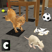 Free Download Cat Survival At Home APK for Samsung