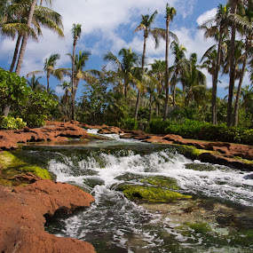 Paradise by Camruin Kilsek - Landscapes Waterscapes