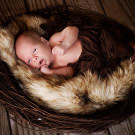 Nesting by Wendy Berning - Babies & Children Babies ( #baby, #newborn, #cute, #love, #nest )