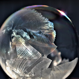 Crystal Bubble by RichandCheryl Shaffer - Artistic Objects Other Objects (  )