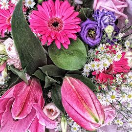 DNI disp 31 by Michael Moore - Flowers Flower Arangements