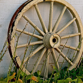 Old Wheel by Laura Luchsinger - Artistic Objects Antiques
