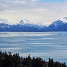 Kachemak Bay by Patricia Phillips - Landscapes Travel ( homer alaska kachemak-bay )