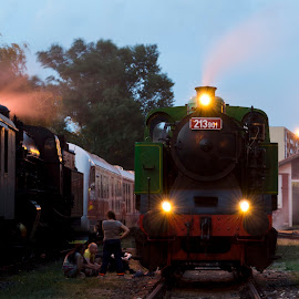 Dvestovka in the night by Foto Grebeči - Transportation Trains ( railroad, rail, train, night, slovakia, steam )