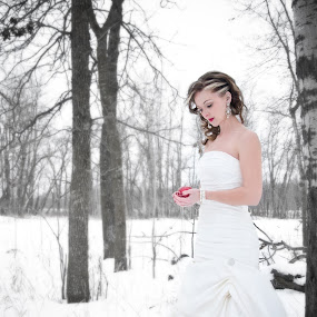 today.. by Tine Butler - Wedding Bride ( model, brides, crisp air, white, frost, beauty, photography, fantasy, weddingbells, red, winter, rock the frock, manitoba photographer, tine butler, fog, wedding, magical, brideal session, tine butler photography, fairy-tale, heaven and earth )