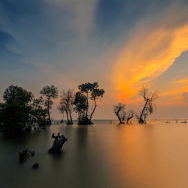 by MazLoy Husada - Landscapes Beaches