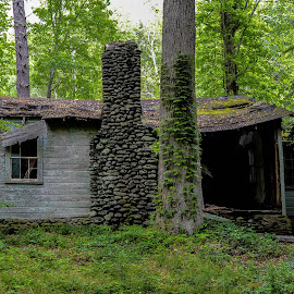 Old House 2015 by Thomas Shaw - Buildings & Architecture Decaying & Abandoned ( green, 2015, tennessee, forest, house, woods, elkmount, roof, window, then, trees, chimney, smoky mountains, abandoned, decay )