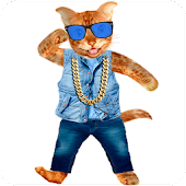 Talking Cat Deluxe APK for iPhone