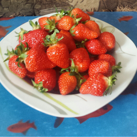 My strawberrie moment by Denisa Cero - Food & Drink Fruits & Vegetables