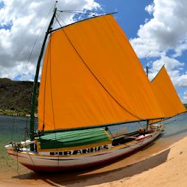 Piranhas by Claudio Maranhao - Transportation Boats ( brazil, riosãofrancisco, boats,  )