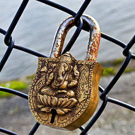 Lock on fence by Damjan Prskalo - Buildings & Architecture Decaying & Abandoned ( fence, elephant, lock, rust, close up )