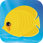 Deep Fishing Kingdom 1.1 Apk