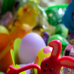 A welcome from the Easter Bunny by Megan Donovan - Public Holidays Easter ( cest moi artful imaging, easter, indoor, bunny, color, candy, megan donovan, easter basket )