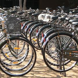 ROW by Kosalai Raman M - Transportation Bicycles