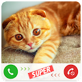 Game Fake Call Cat apk for kindle fire