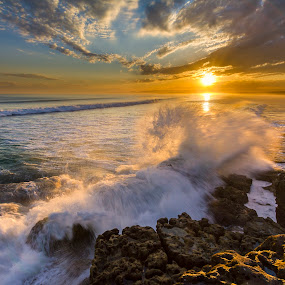 Dragon Wave by Andy Hutchinson - Landscapes Sunsets & Sunrises ( sunset, wave, tide, ocean, surf, rocks, coast )