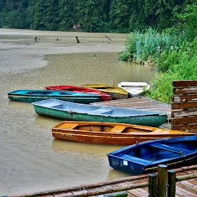 by Felea Adina - Transportation Boats