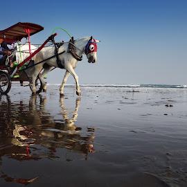 dokar pantai by Indra Prihantoro - Transportation Other ( transportation )