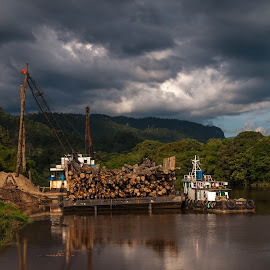 Barge by Ted Khiong Liew - Transportation Boats ( #transport #tugboat #river #water #barge #timber #wood )