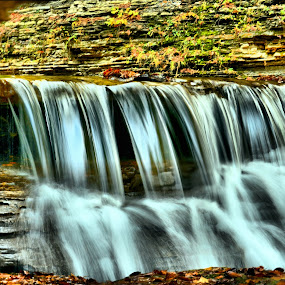Waterfalls at stony brook state park  by Jim Davis - Landscapes Waterscapes ( water, oranges., reds, fall colors, raging water, water falls, stone, wet, autumn colors, leaves, fallen leaves, stones )